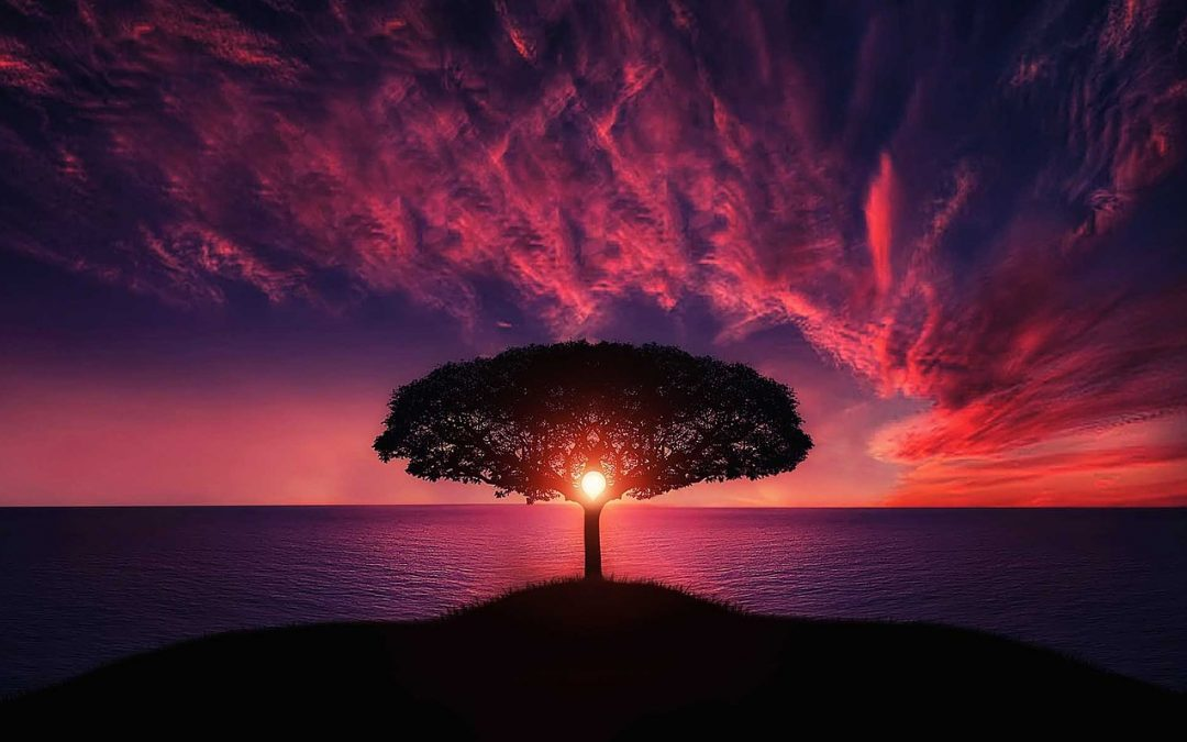 De aangeboren wijsheid van jouw essentie ligt in jou
